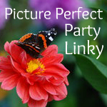 Perfect Picture linky Party!