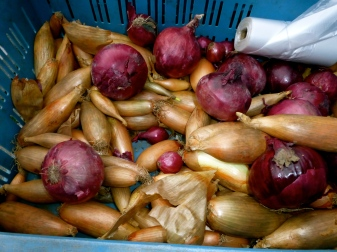 Onion Pick N'Mix. Farmer's Market, Prague.